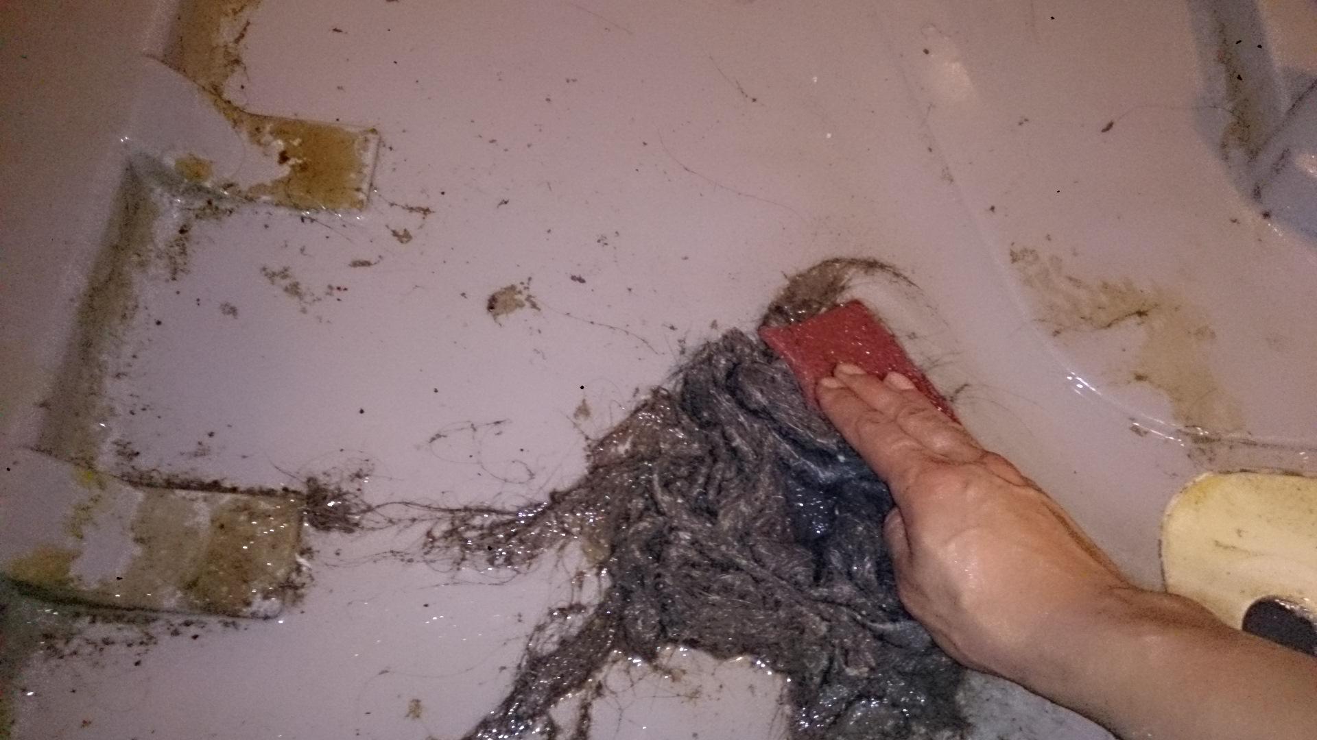 浴槽エプロンのゴミや雑菌