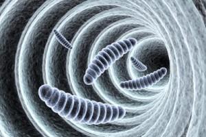レジオネラ属菌の拡大