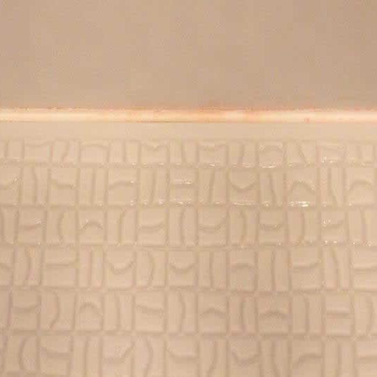 浴室のピンク色の汚れって何なの?