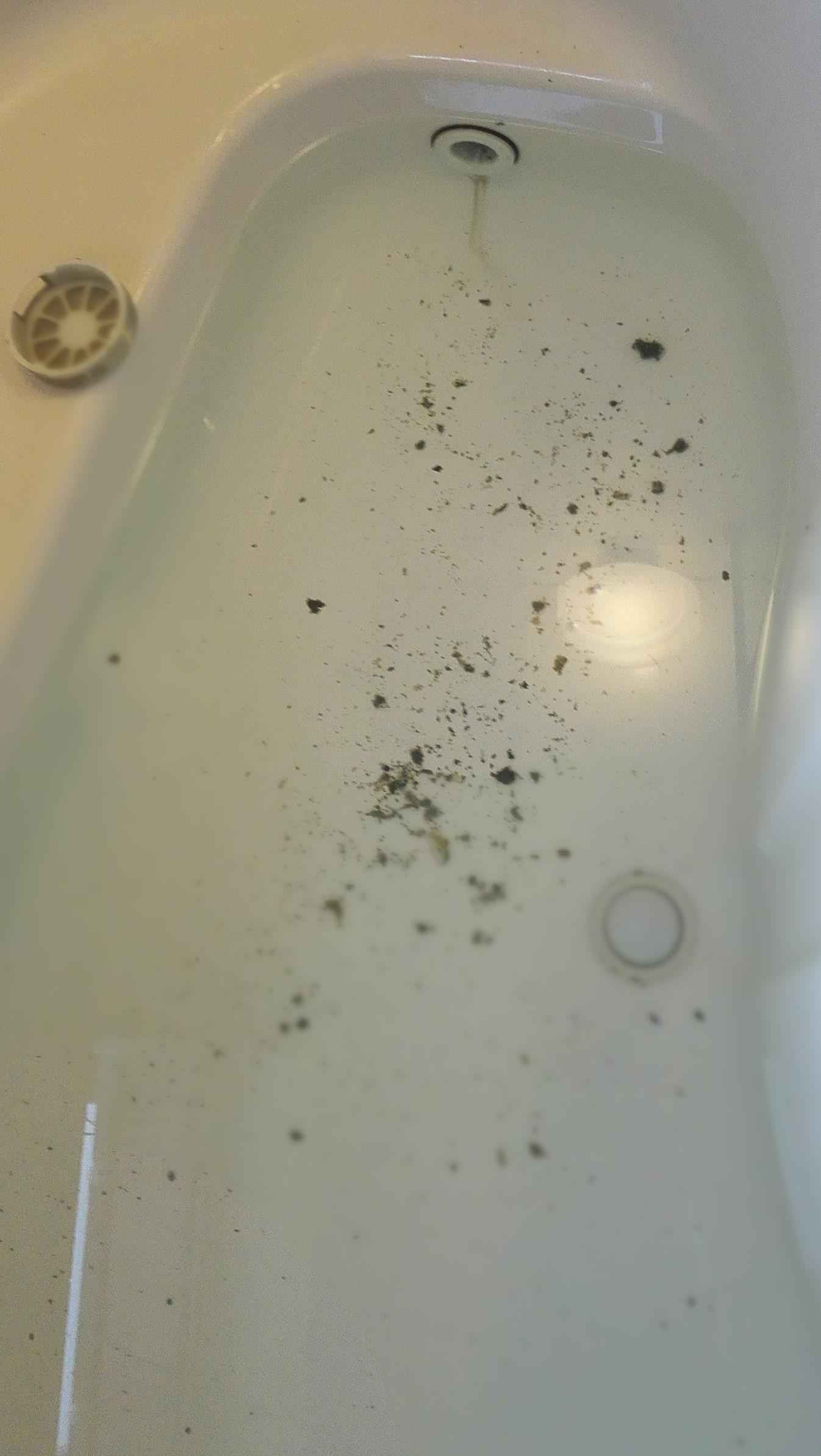 横浜市青葉区H様宅の配管のゴミ