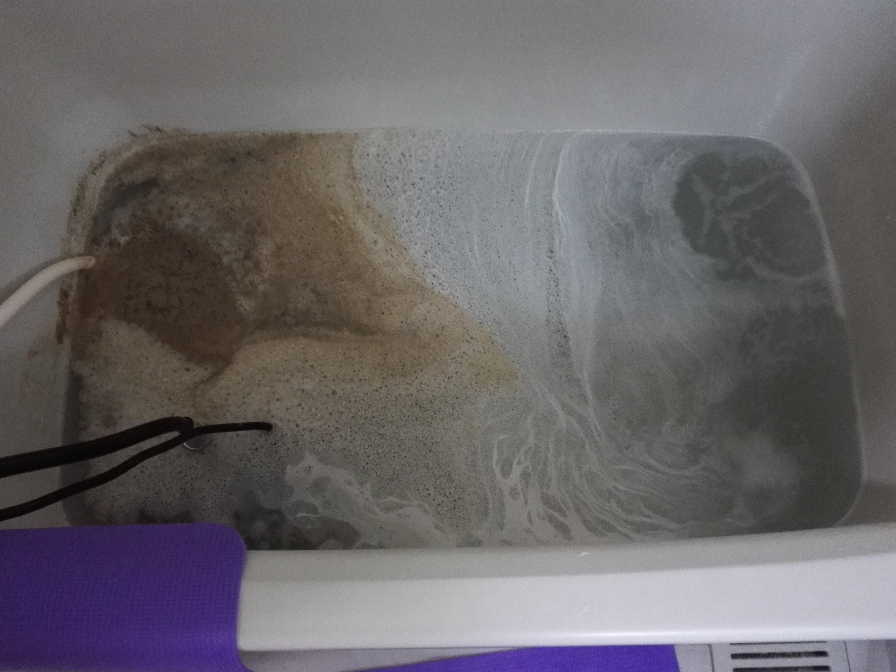 汚れや雑菌1